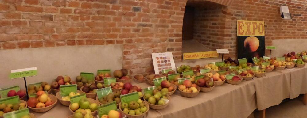 Exposition permanente de pommes au pigeonnier