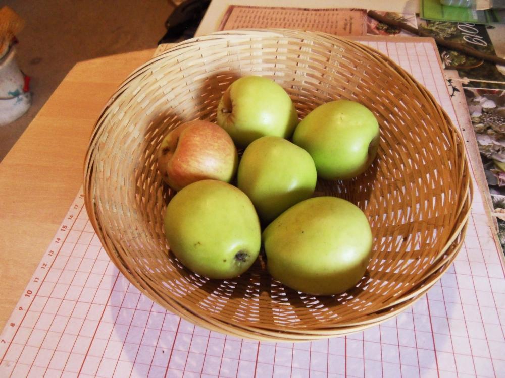 Pomme de Maurice