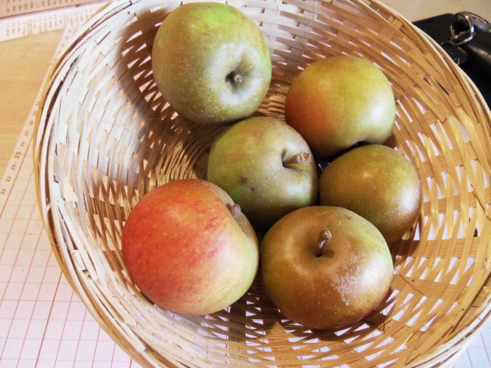 Pomme de fer