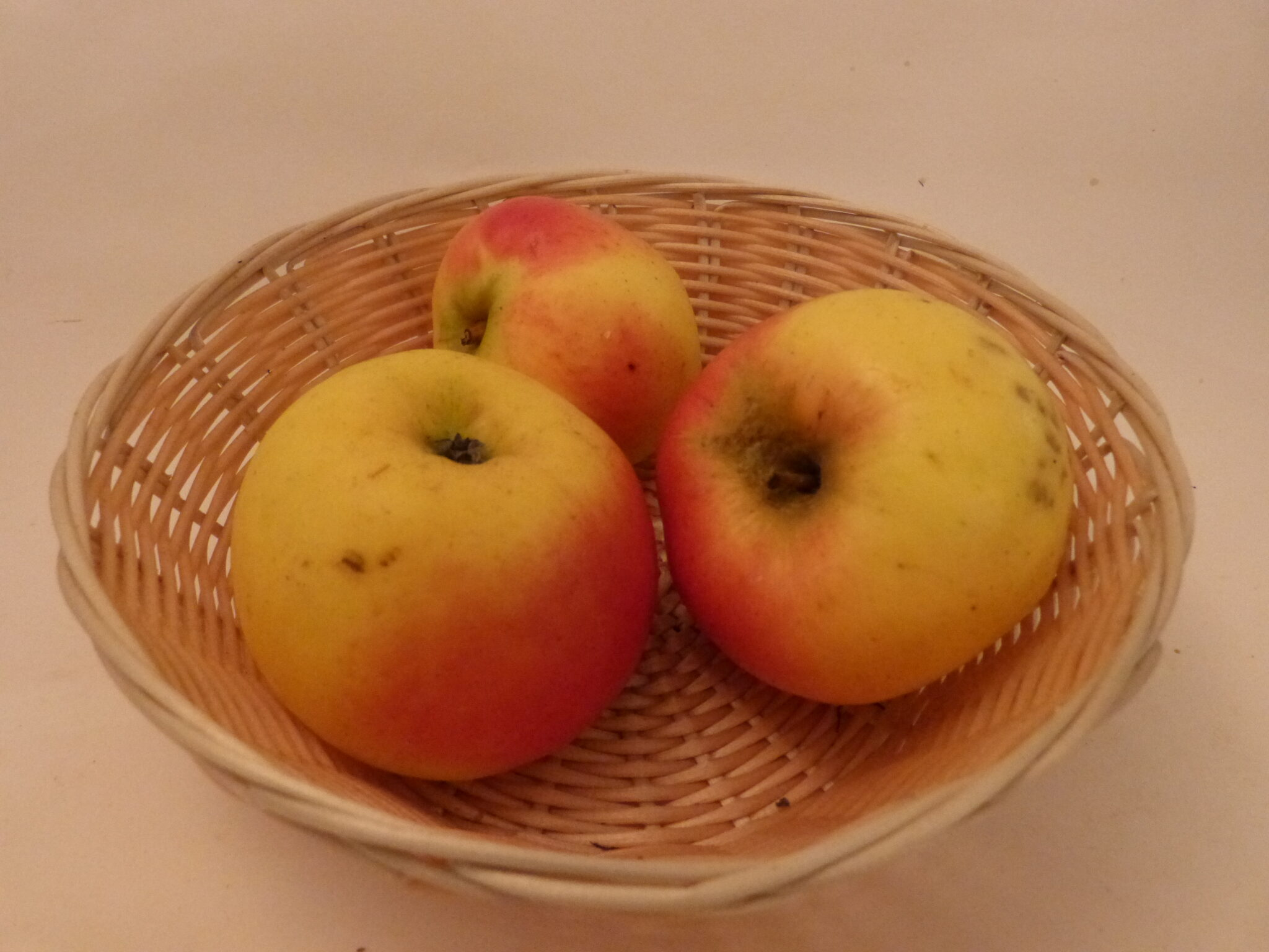 Api gris (fruit).