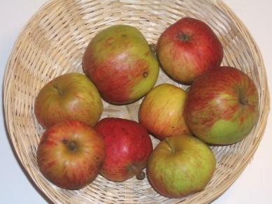 Avrolles (fruit).