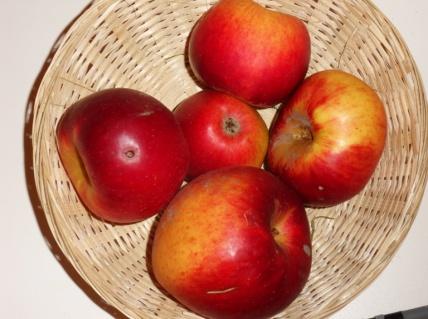 Bonne Ente (fruit).