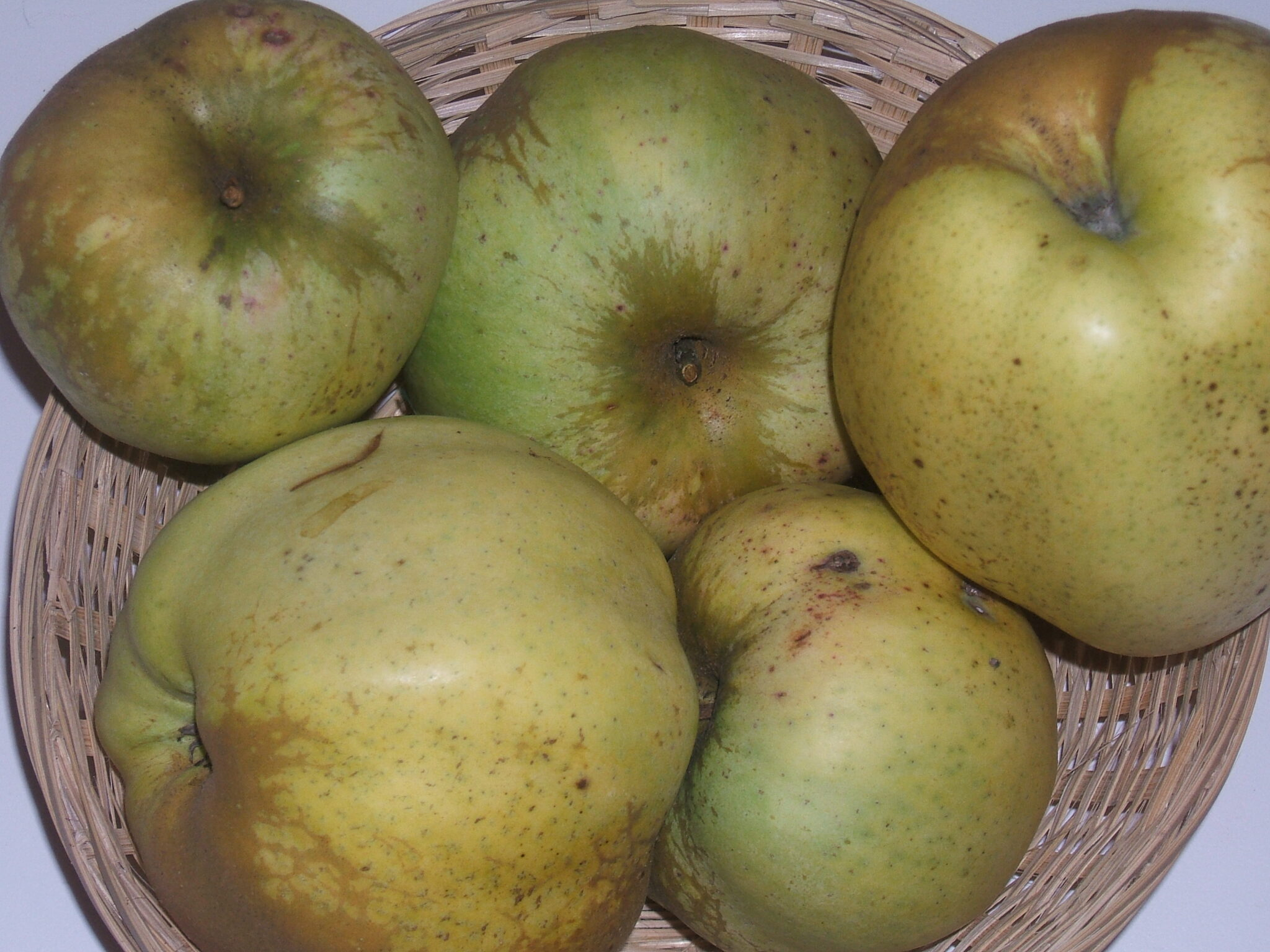 Calville du Roi (fruit).