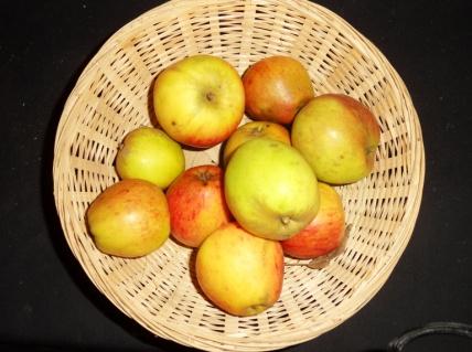 Clos Renaux (fruit).