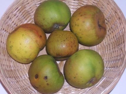 Clozette (fruit).