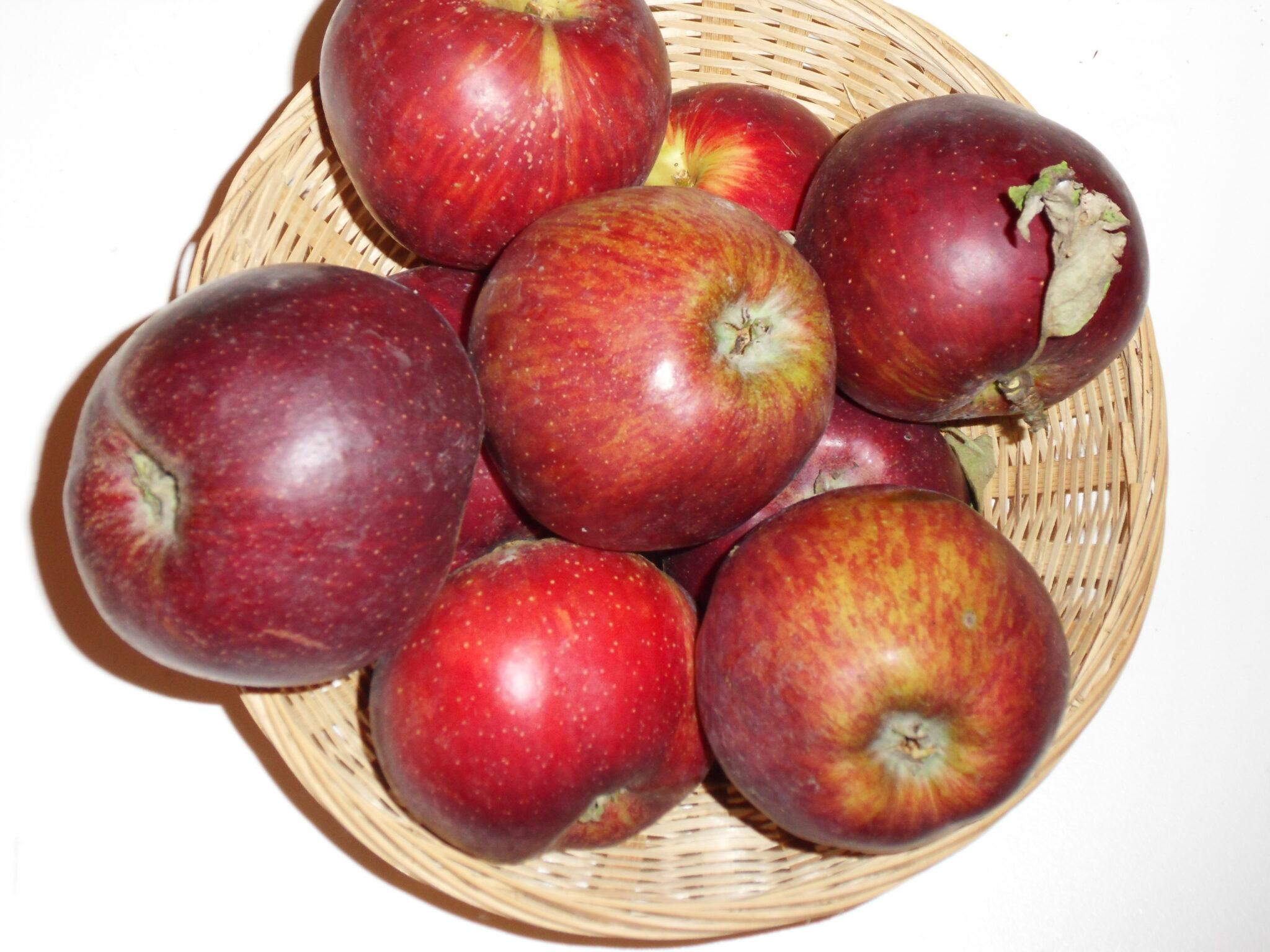 Coeur de boeuf (fruit).