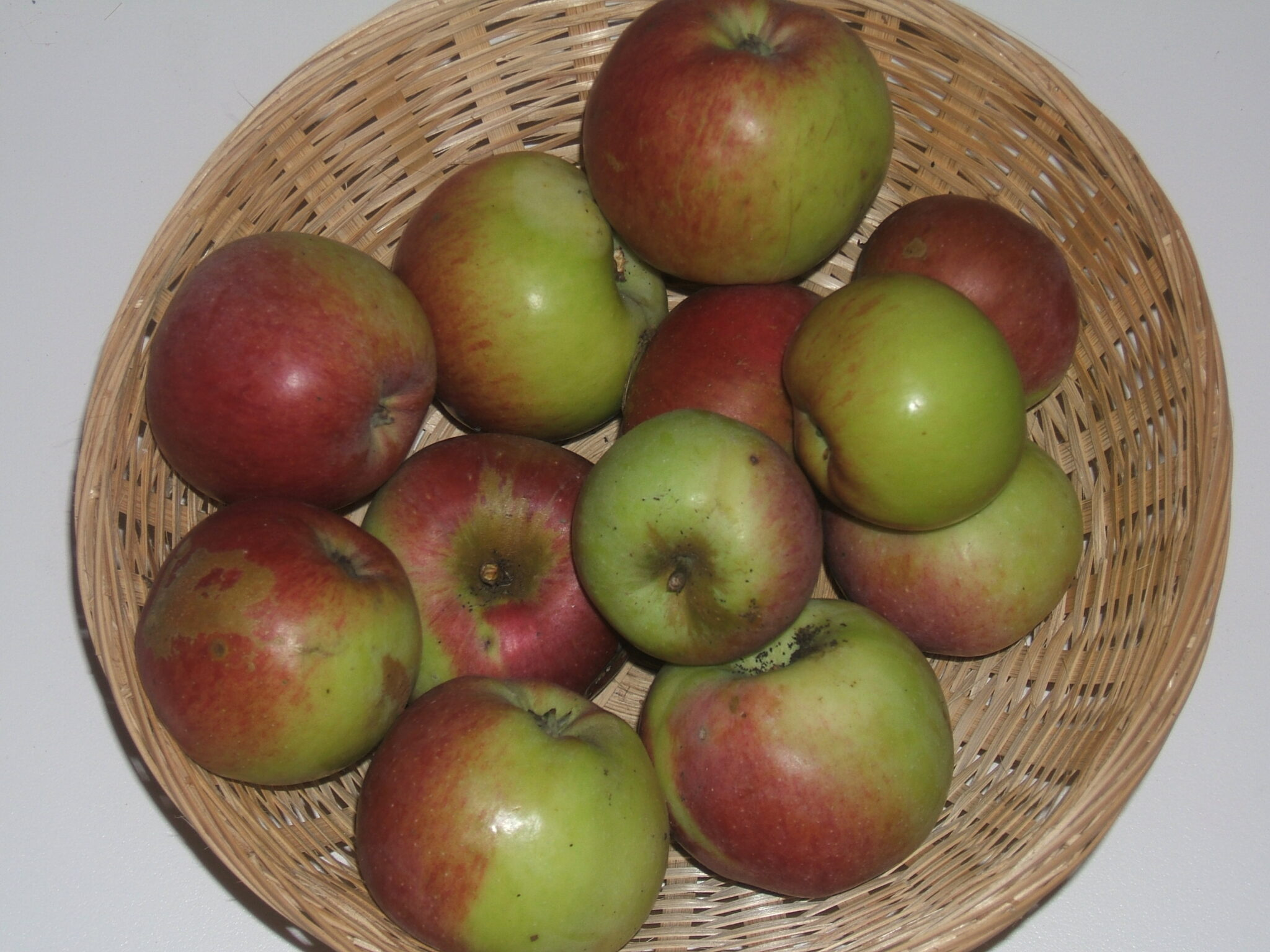 Court Pendu Rouge (fruit).