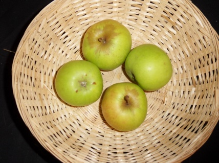 Docteur Blanche (fruit).