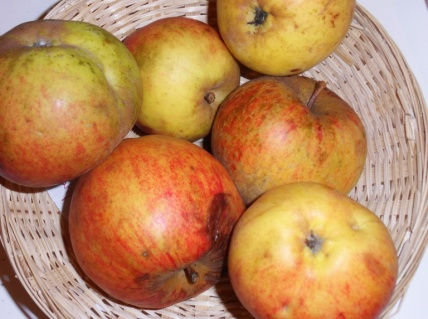 Doux Vérêt de Bray (fruit).