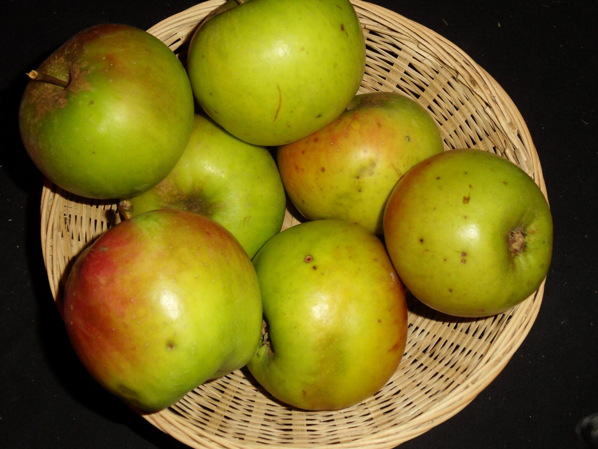Edouard VII (fruit).