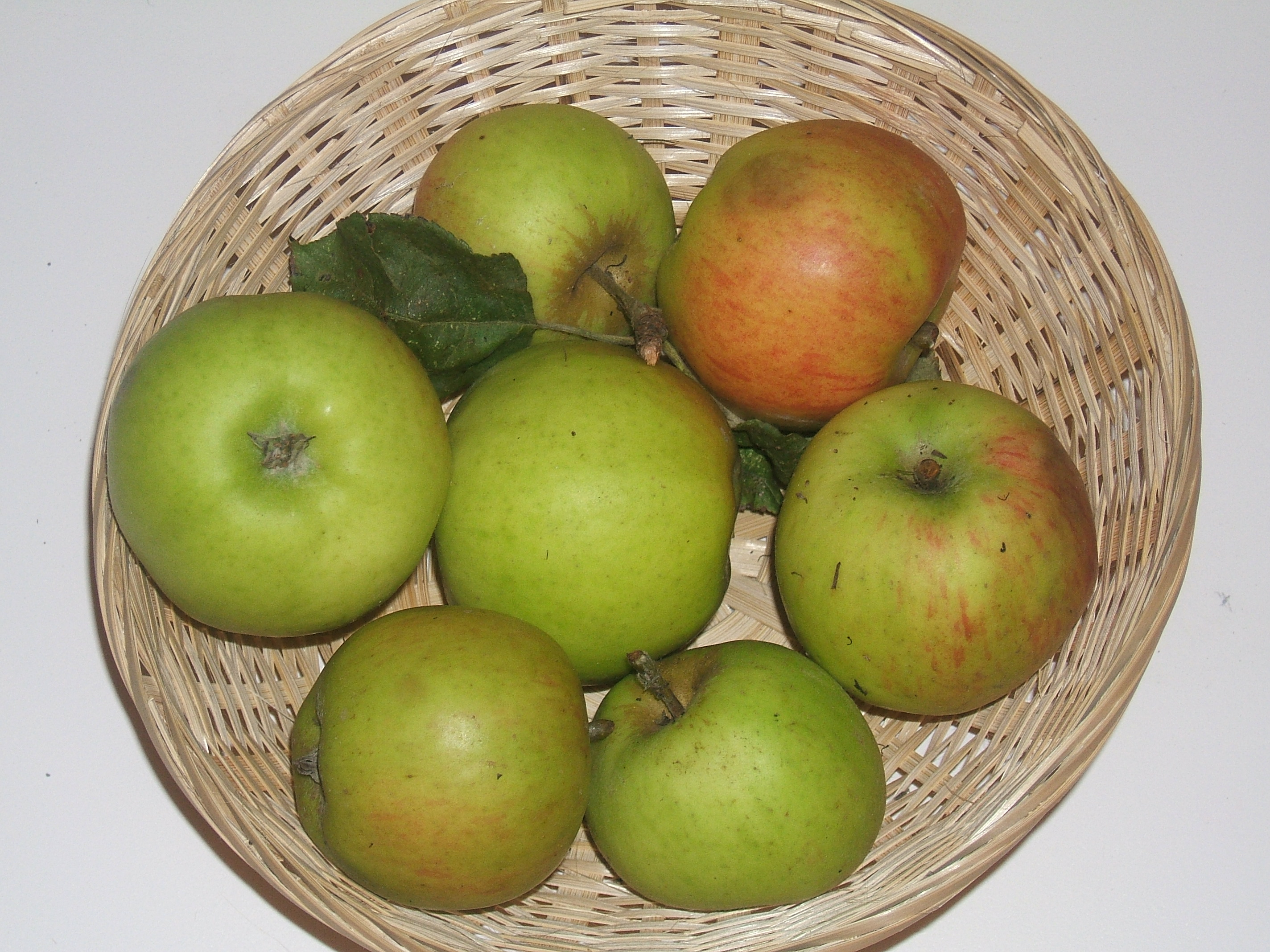Fréquin de Chartres (fruit).