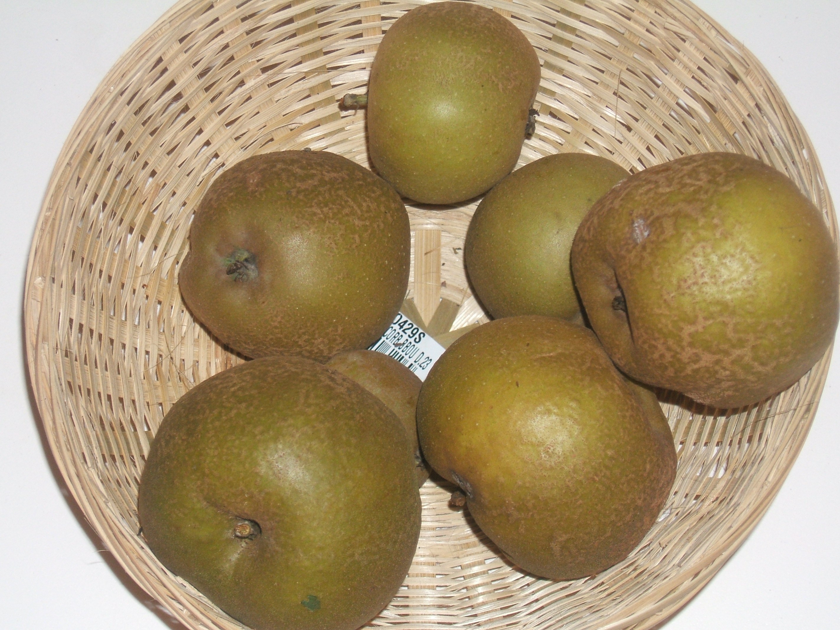 Gris Baudet (fruit).