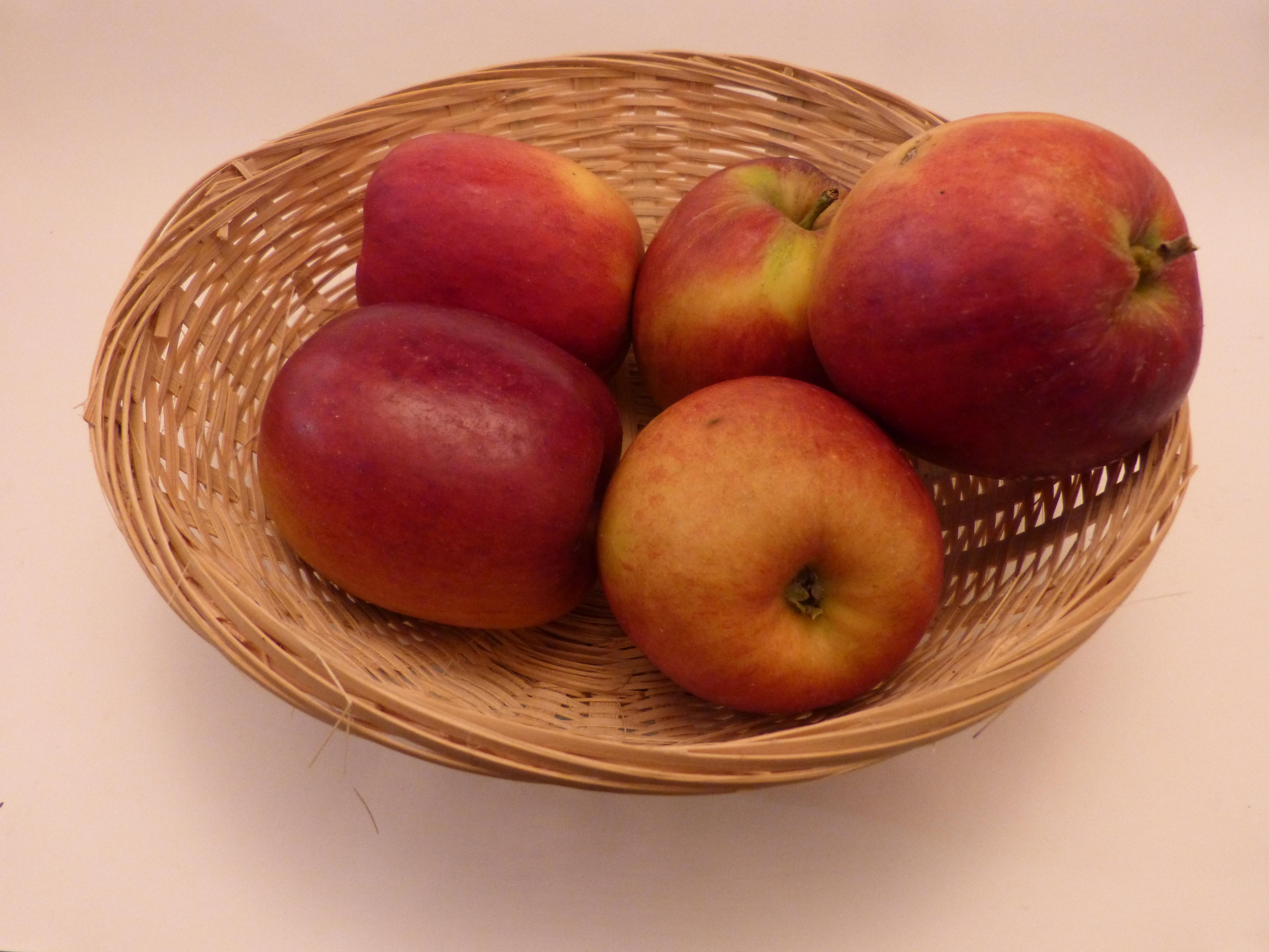 Gros Colapuy (fruit).