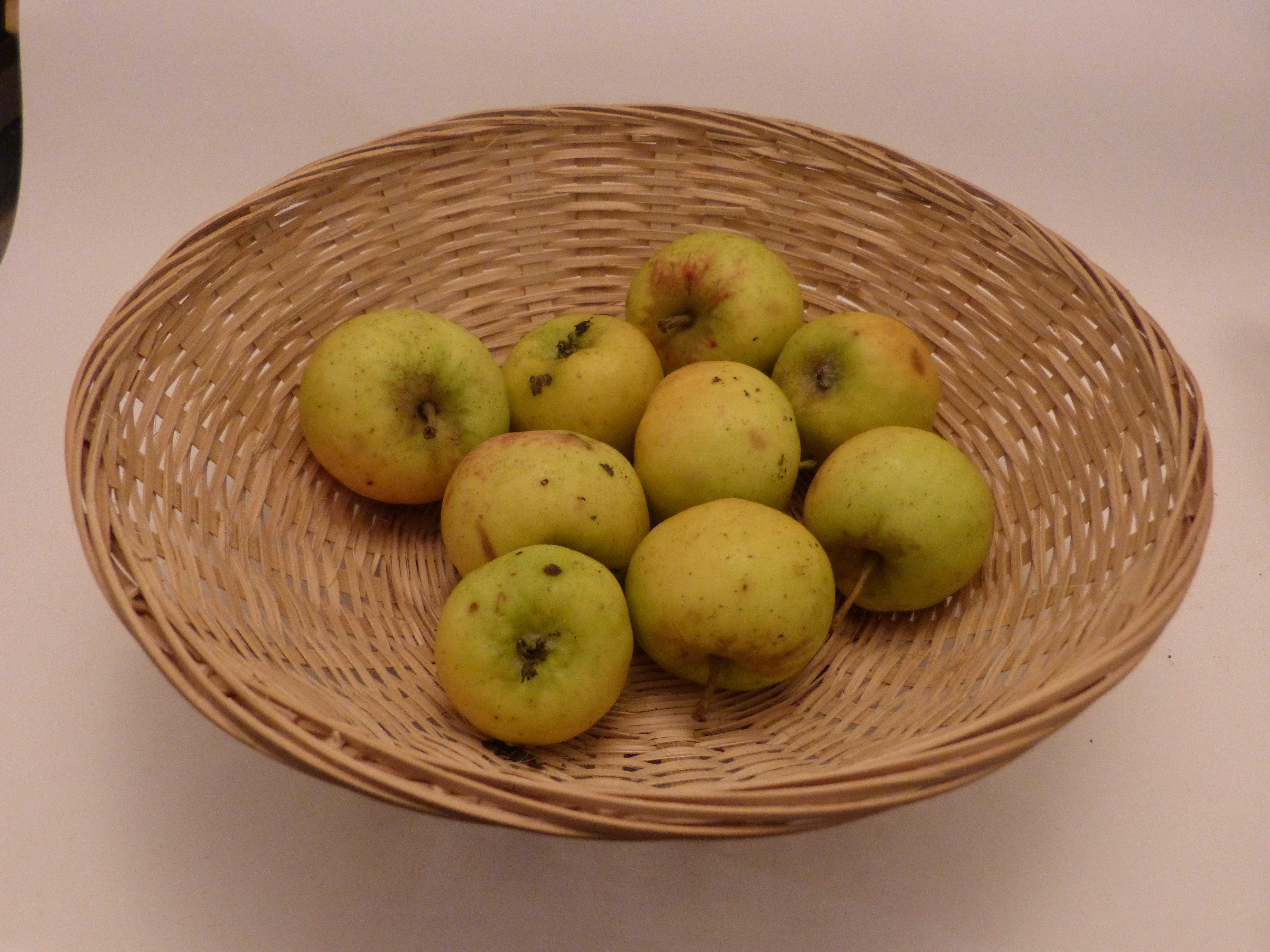 Jeannetone (fruit).