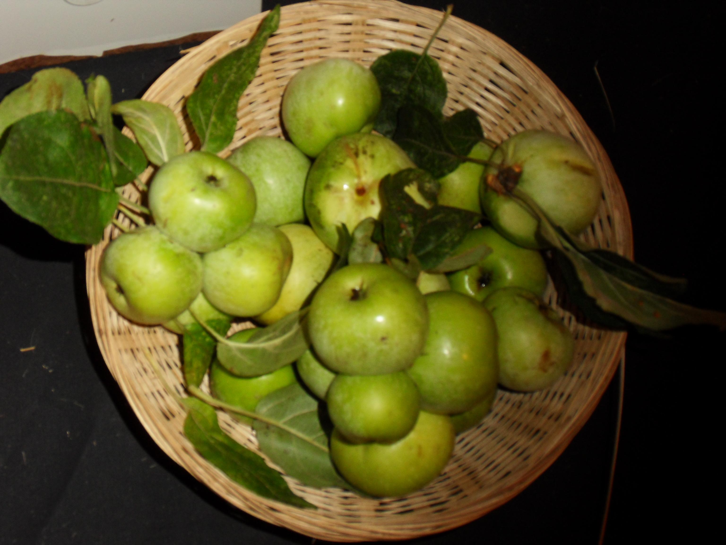 Jouan (fruit).