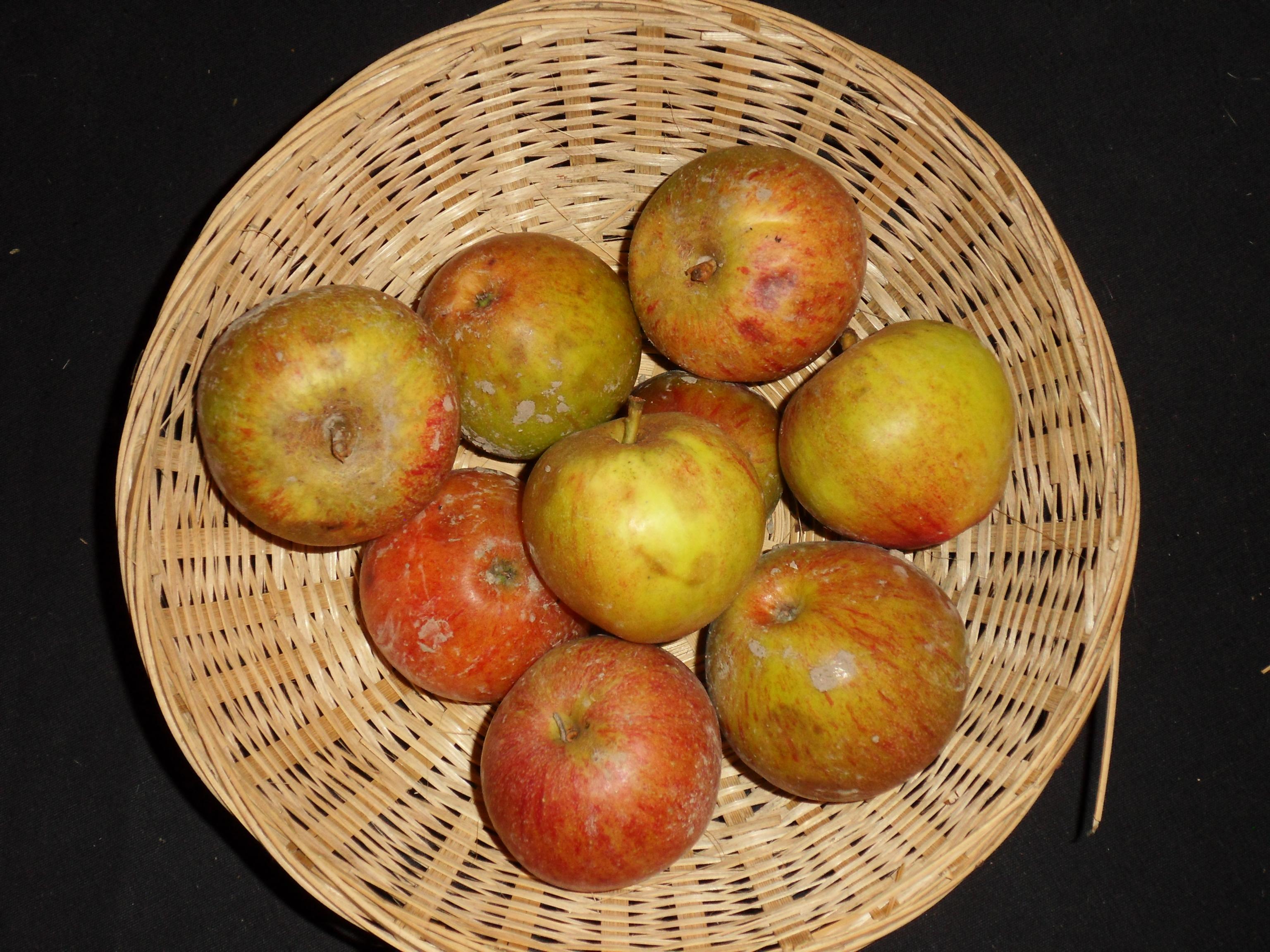 Jouveaux (fruit).