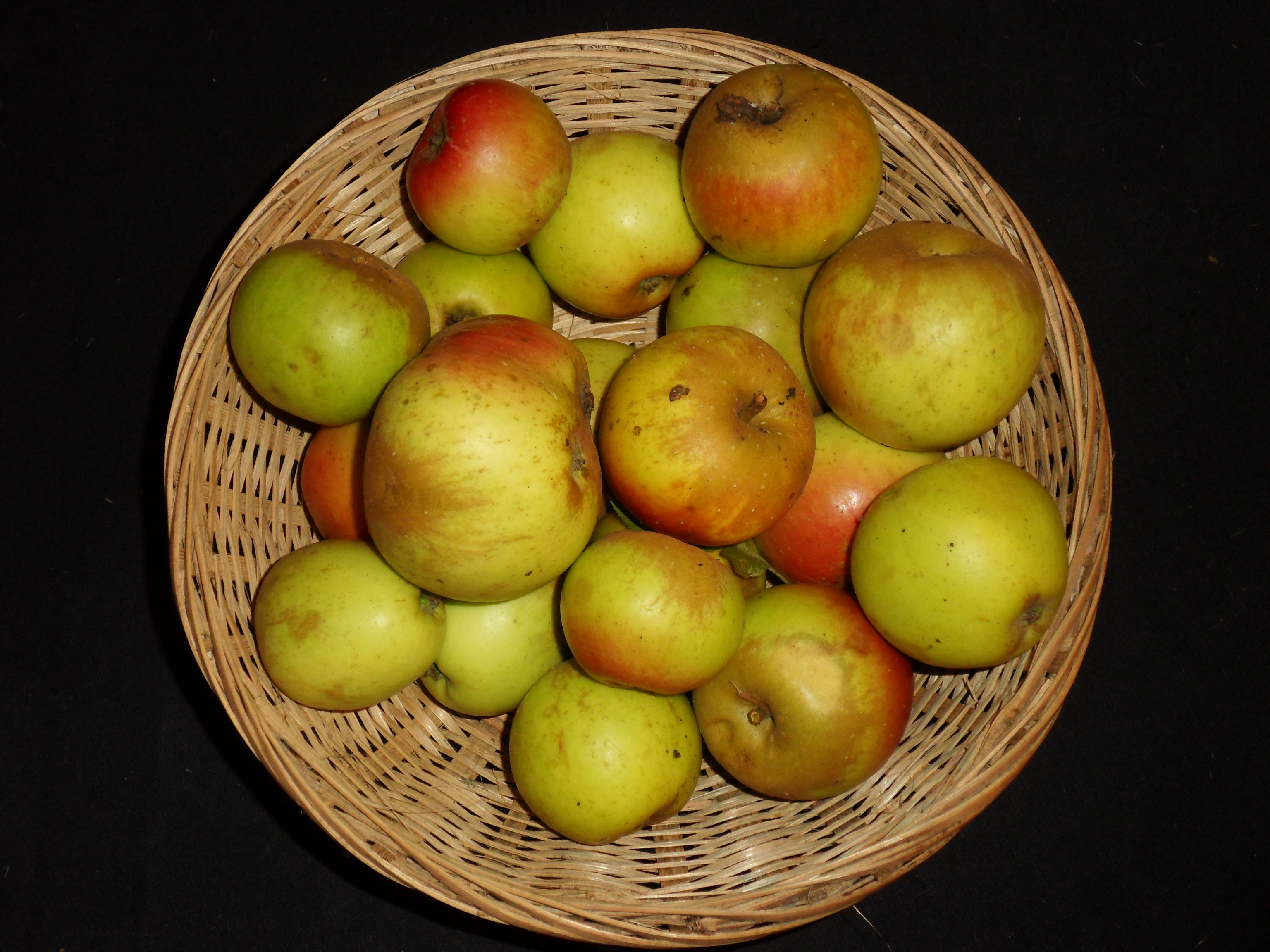 Jumelles (fruit).