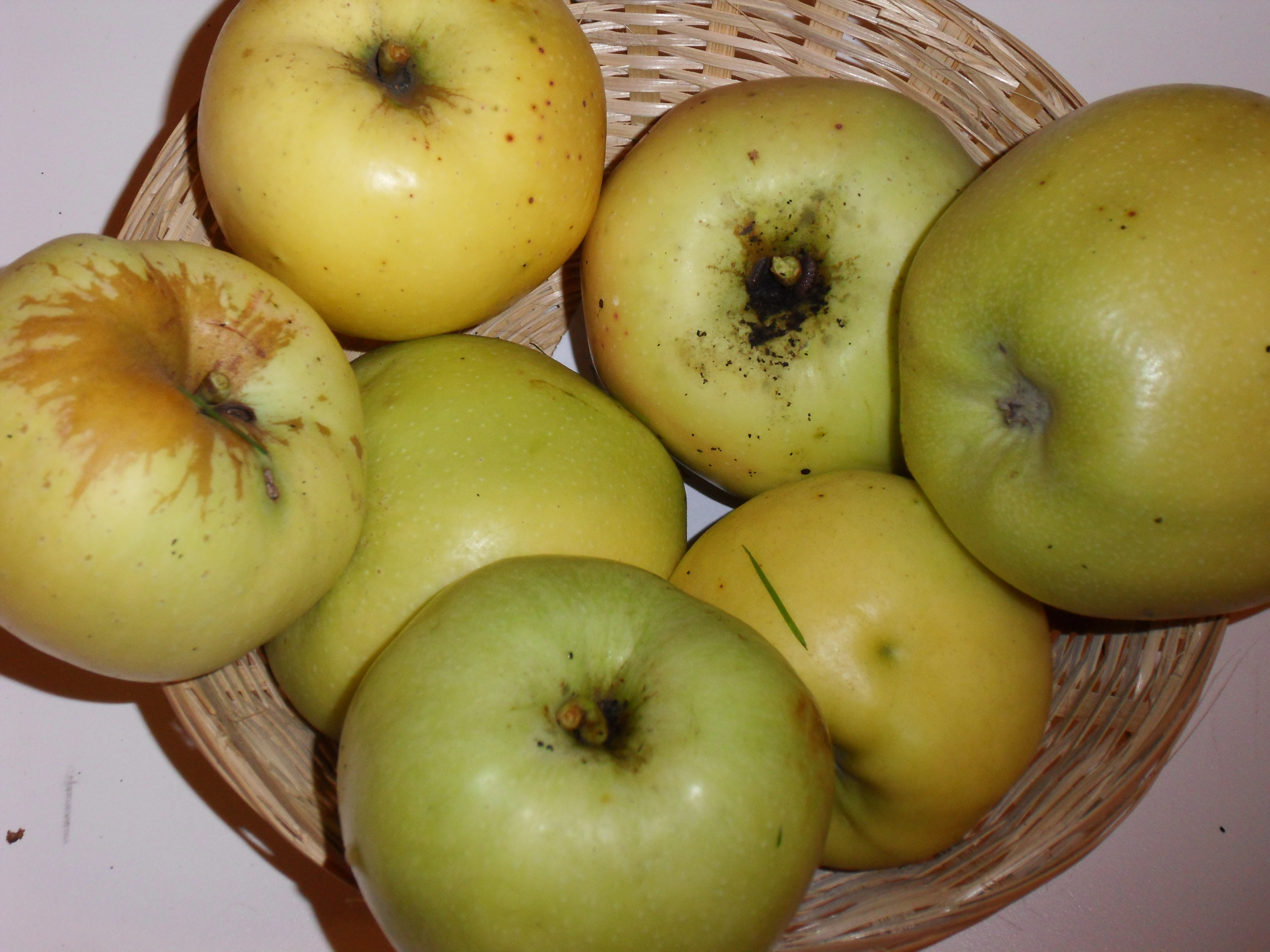 Ménagère 1 (fruit).