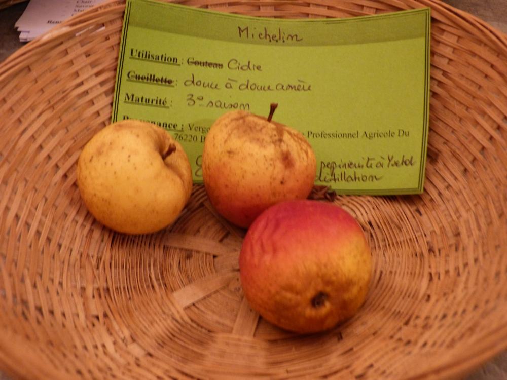 Michelin (fruit).