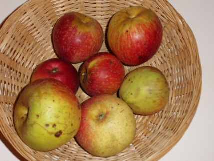 Rouget Pestel (fruit).