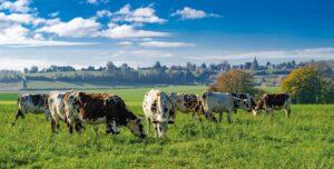 La ferme du Domaine de Merval : les enjeux